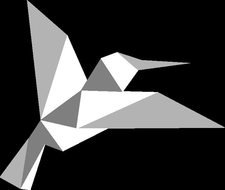 VTC PLUS - oiseau négatif